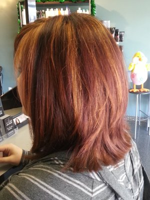 Glowing Red Chestnut (after)